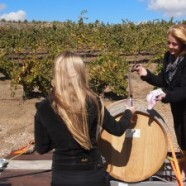 Temecula celebrates California Wine Month